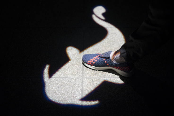 琵琶湖博物館ナマズの影