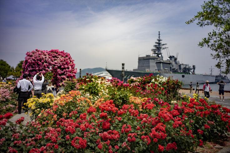 サンポート高松のピンクのバラと掃海母艦うらが
