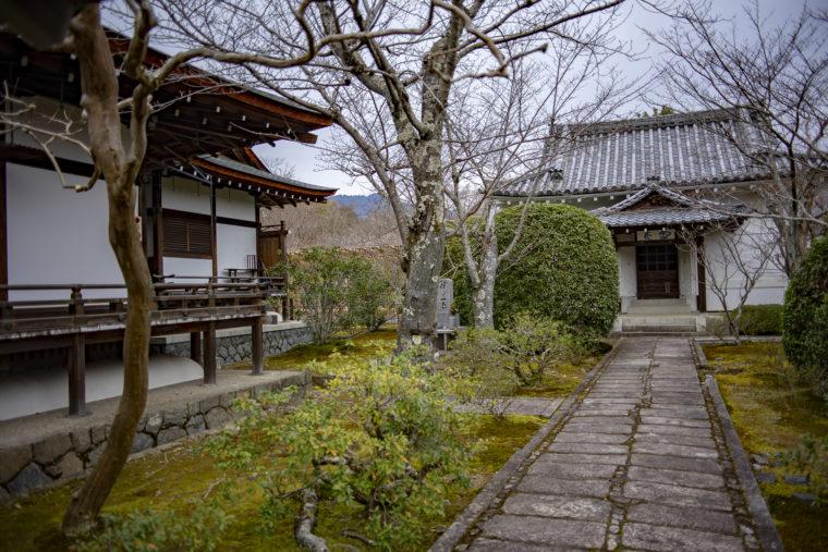 天龍寺多宝殿までの庭