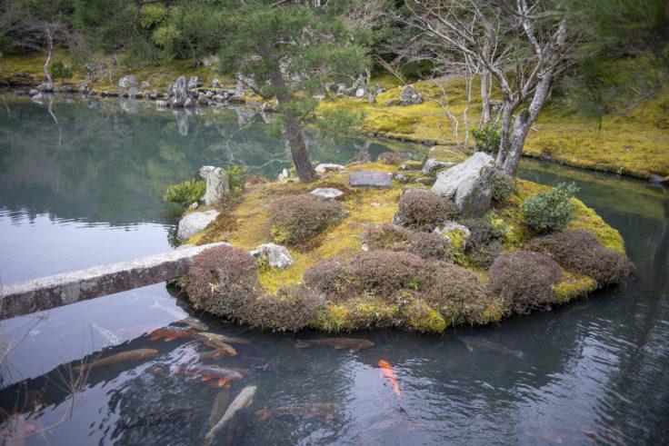 天龍寺亀島