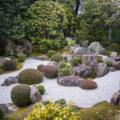 妙心寺退蔵院には3つの庭園はどれも素敵