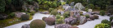 退蔵院元信の庭