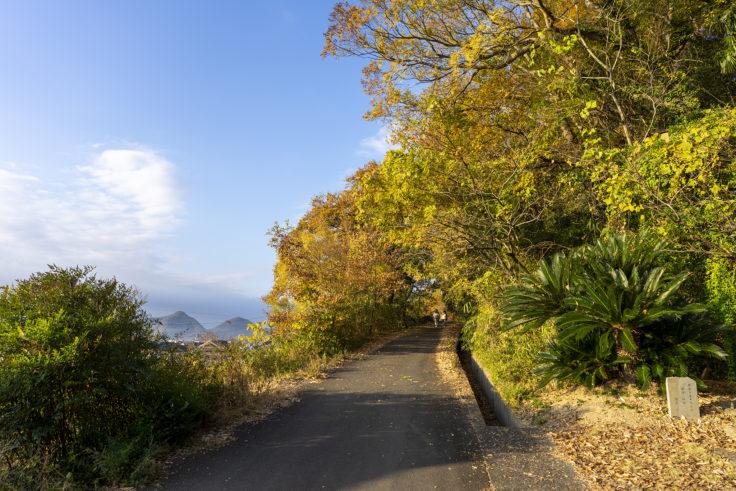由良山登山道