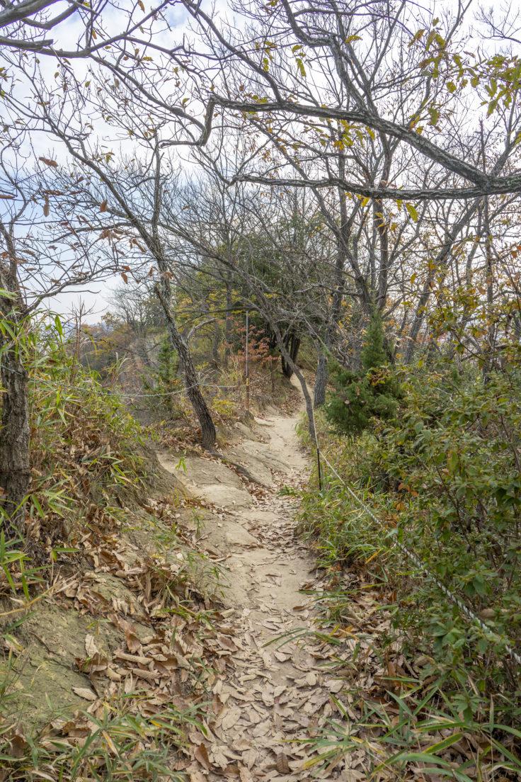 由良山東登山口までの道