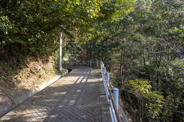 八栗山登山道2