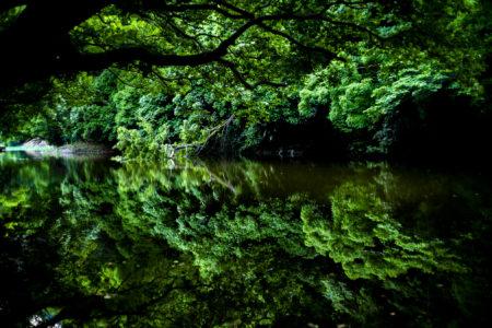 栗林公園のリフレクション