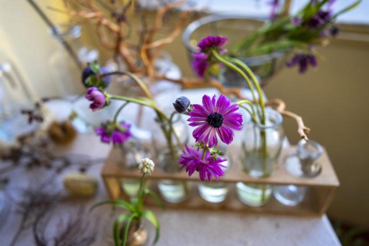 bouffier la rue(ブフィエ・ラ・リュ)のピンクの花6