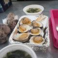 北灘漁協組合「さかな市」で白蛤(シロハマグリ)を焼く