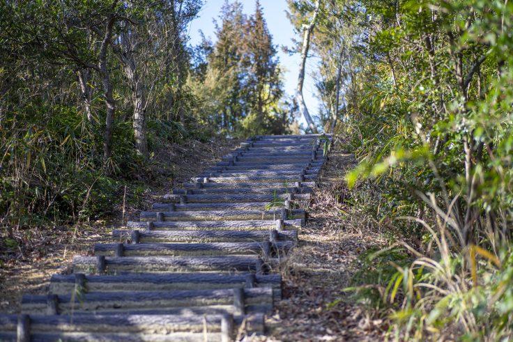 さぬきの森森林浴公園階段