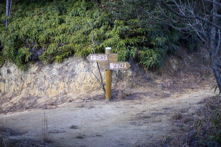さぬきの森森林浴公園展望広場分岐