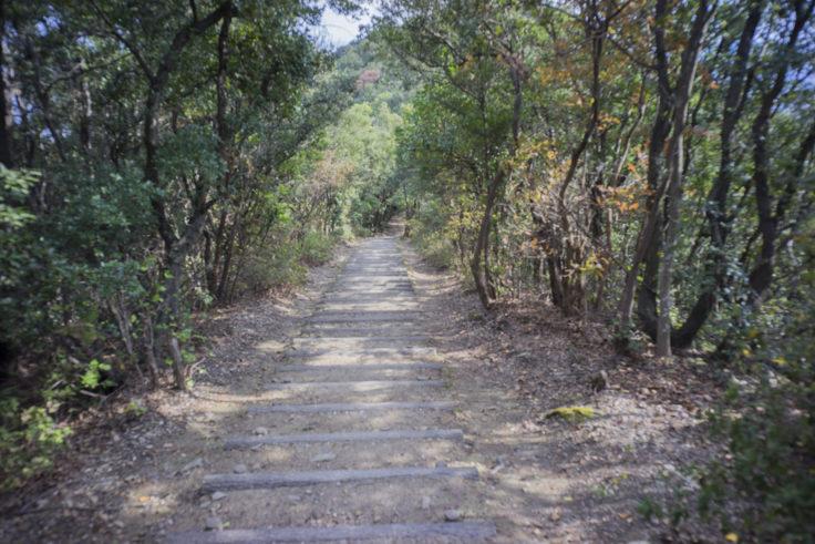 日峯大神子公園散策コース
