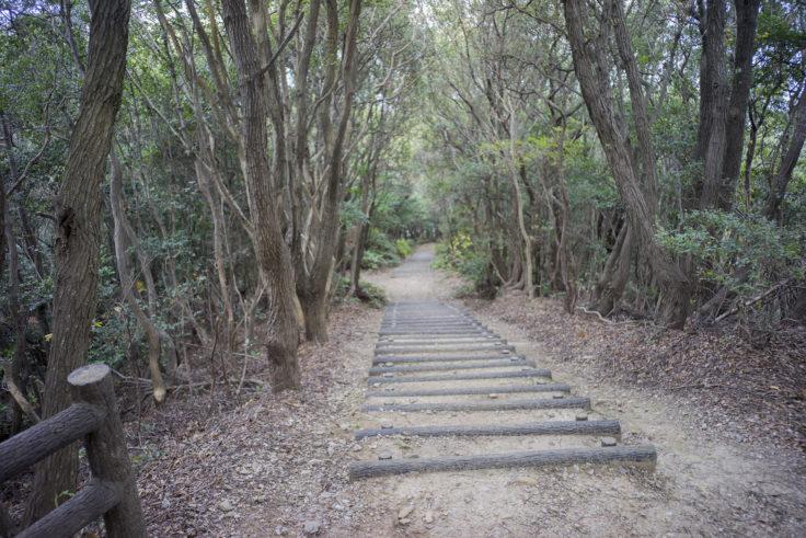 日峯大神子広域公園散策コース3