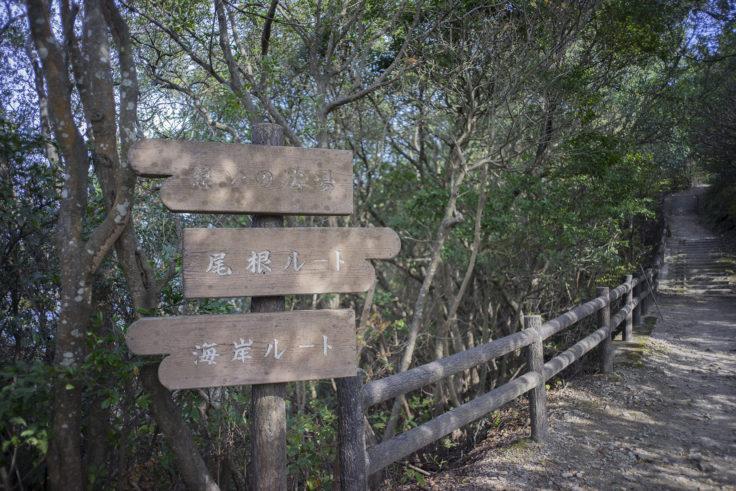 日峯大神子公園半島散策の標識