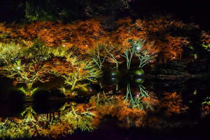 栗林公園の紅葉ライトアップリフレクション