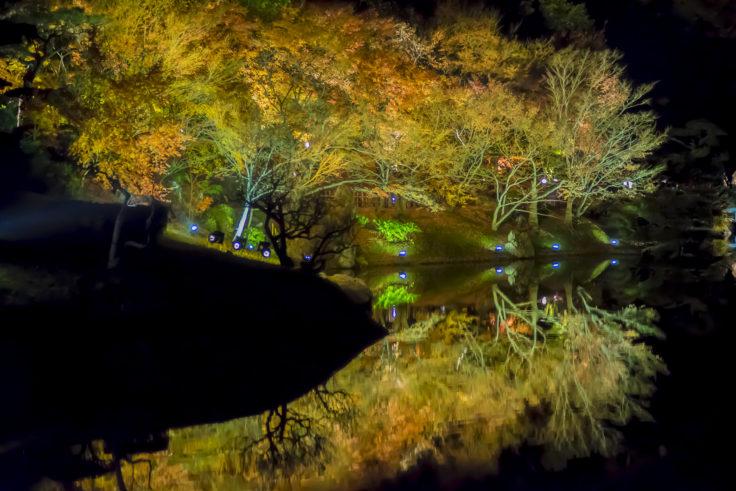 栗林公園の紅葉ライトアップリフレクション2