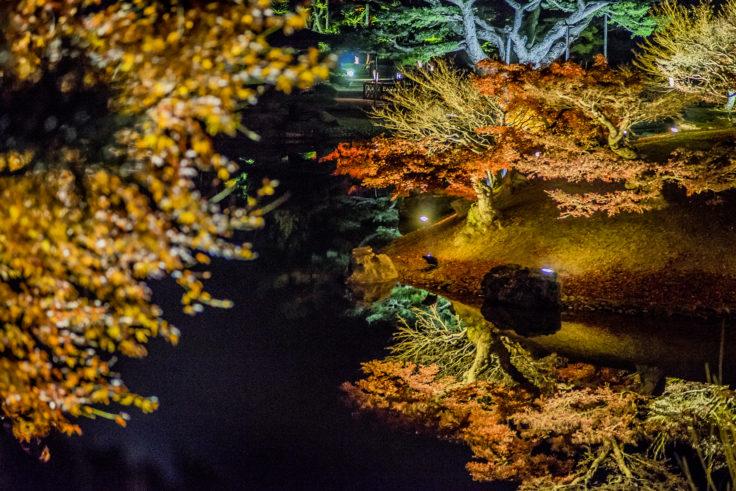 栗林公園の紅葉ライトアップリフレクション3