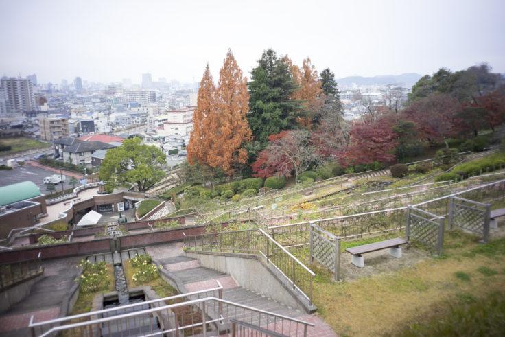 半田山植物園からの景色