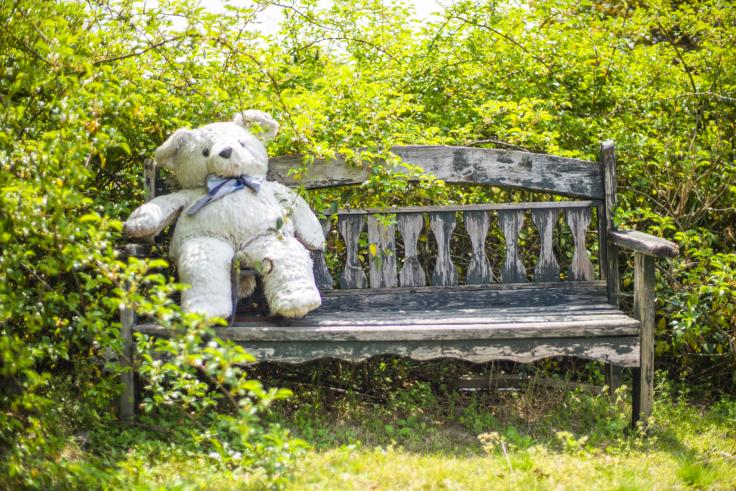 よもみの庭の熊