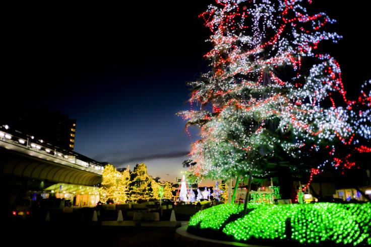 坂出駅のクリスマスツリー