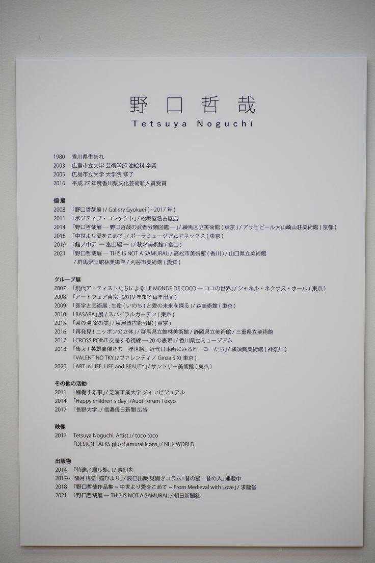 野口哲哉氏略歴