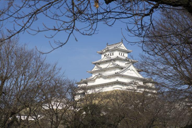 姫路市立動物園から見た姫路城