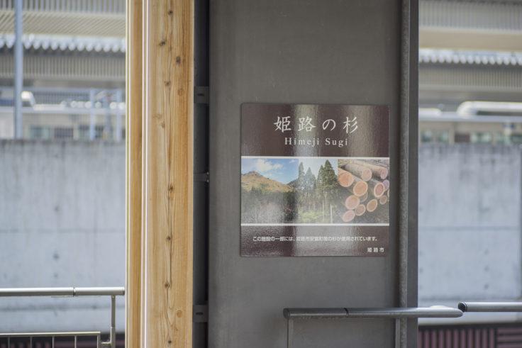 姫路駅の杉