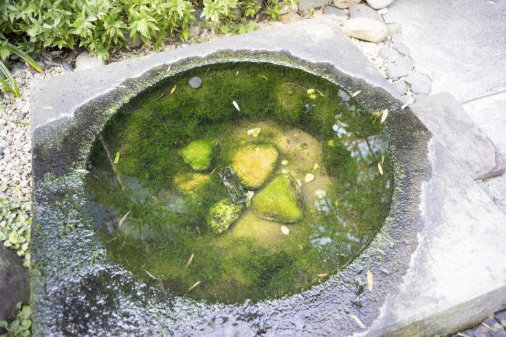 灘菊酒蔵の万葉の清水