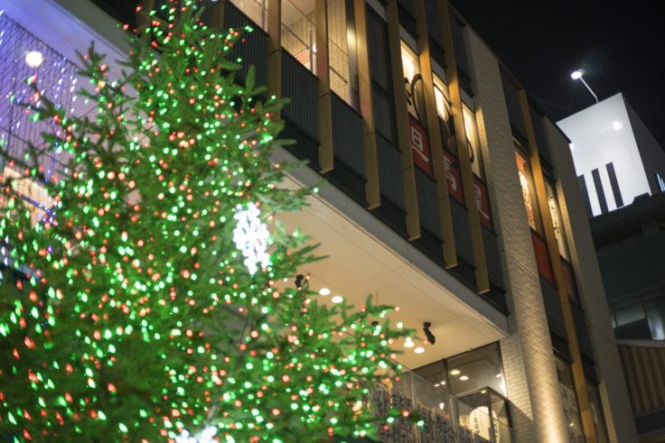 姫路フェスタ前のクリスマスツリー