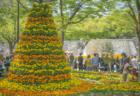 高松フラワーフェスティバルの花2