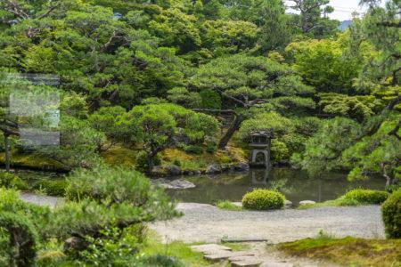 白河院庭園8