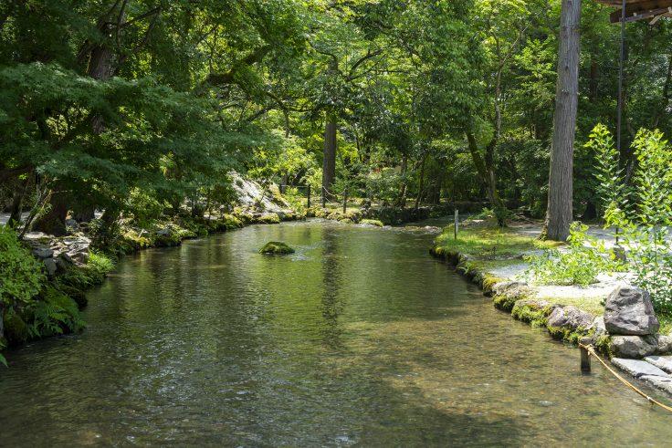 上賀茂神社舞殿から見た川