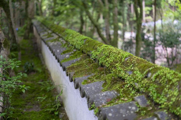高山寺石水院の塀