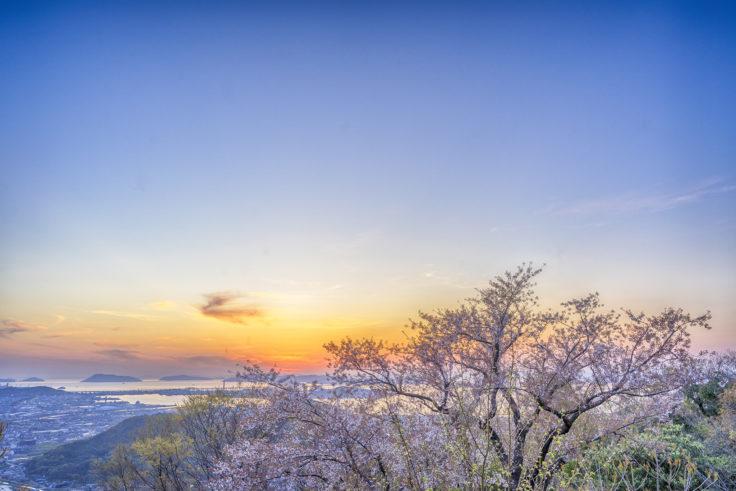 白峰展望台の夕焼けと桜