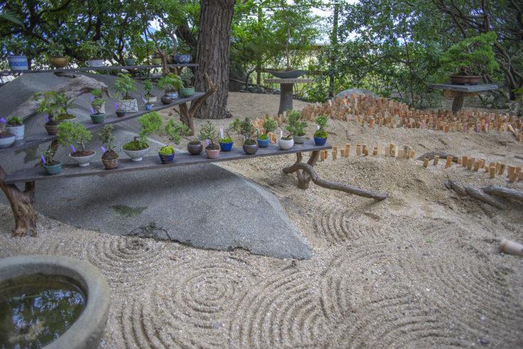 女木島「BONSAI deepening roots」に庭2