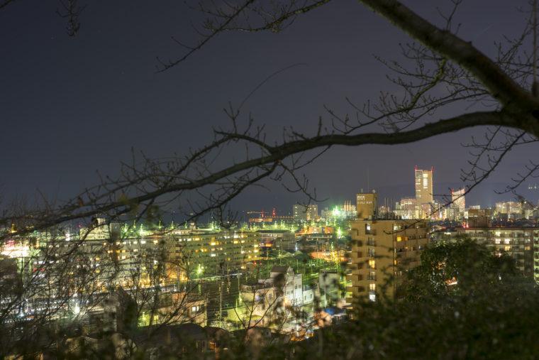 喜代美山荘花樹海から見た高松シンボルタワー
