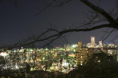 喜代美山荘花樹海からの高松シンボルタワー