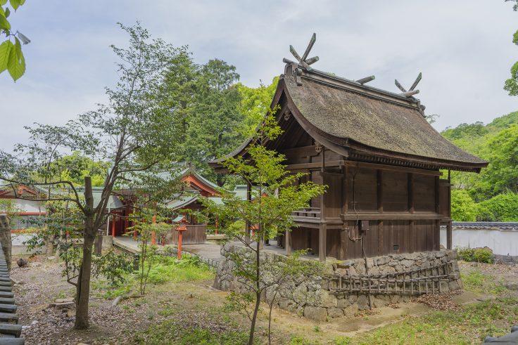 神谷神社本殿斜め後ろ