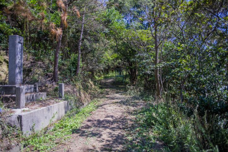 大島の北の山登山道