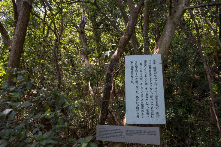 大島山道での説明