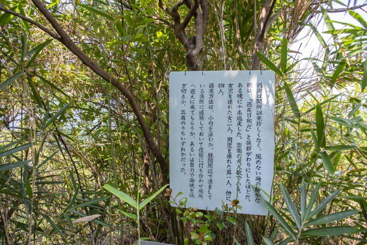 大島山道の説明2
