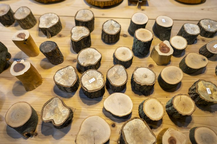 キトクラス、木材コーナー8