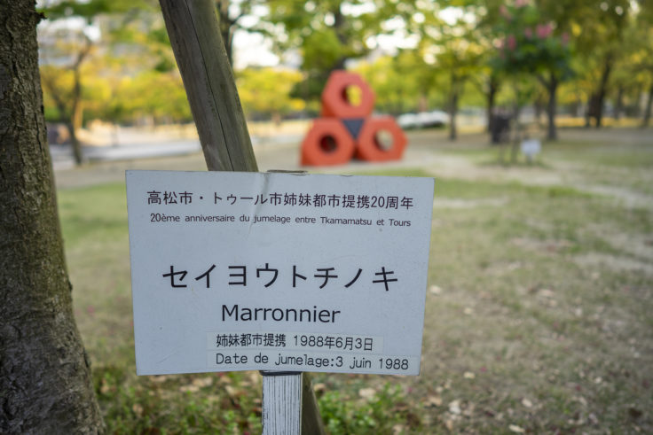 高松市中央公園のベニバナトチノキ表示