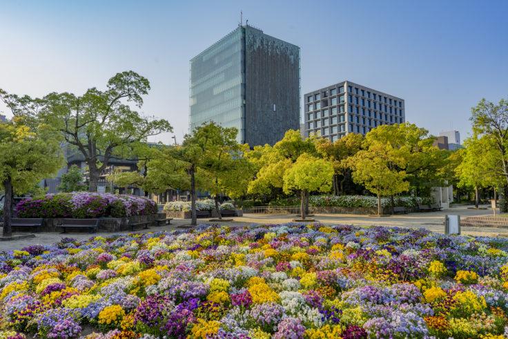 高松市中央公園の花壇と百十四銀行本店