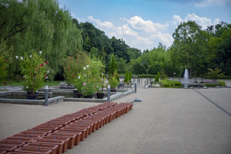 京都府立植物園入口