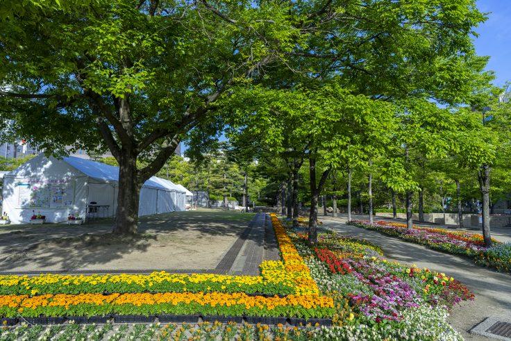 高松春のまつりフラワーフェスティバル2021の花