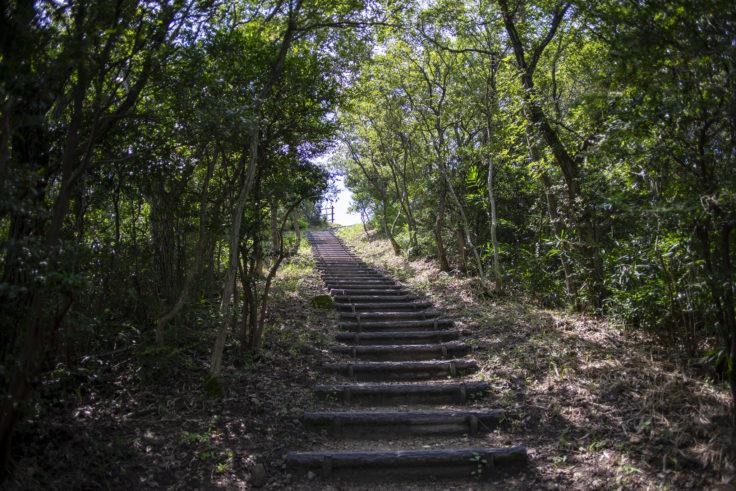 あじ竜王山公園の階段2