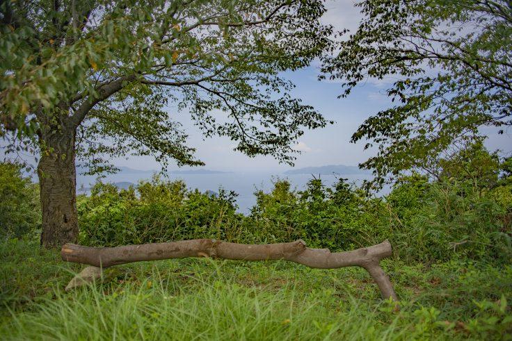 遠見山頂上海側の景色