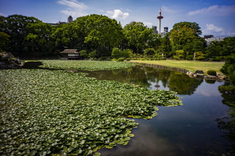 渉成園の印月池に映る京都タワー