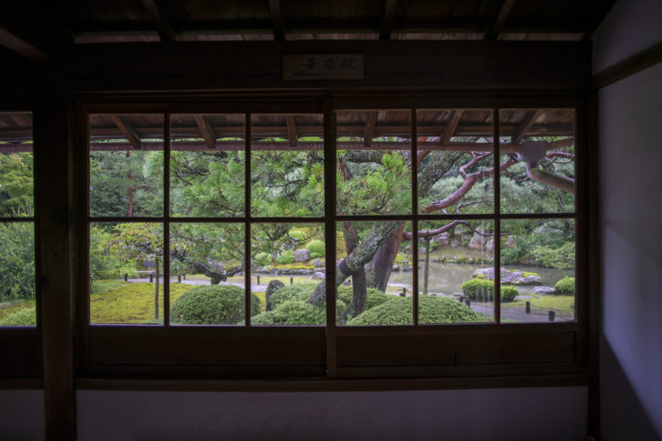 小御所から見た龍心池