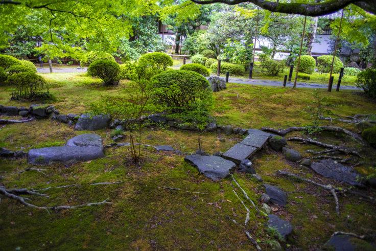 霧島の庭2